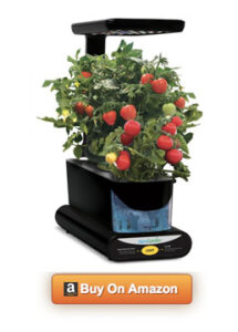 Miracle-Gro AeroGarden Sprout Plus LED Review