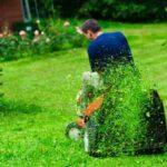 Mowing in a garden