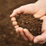Making an improvement in soil